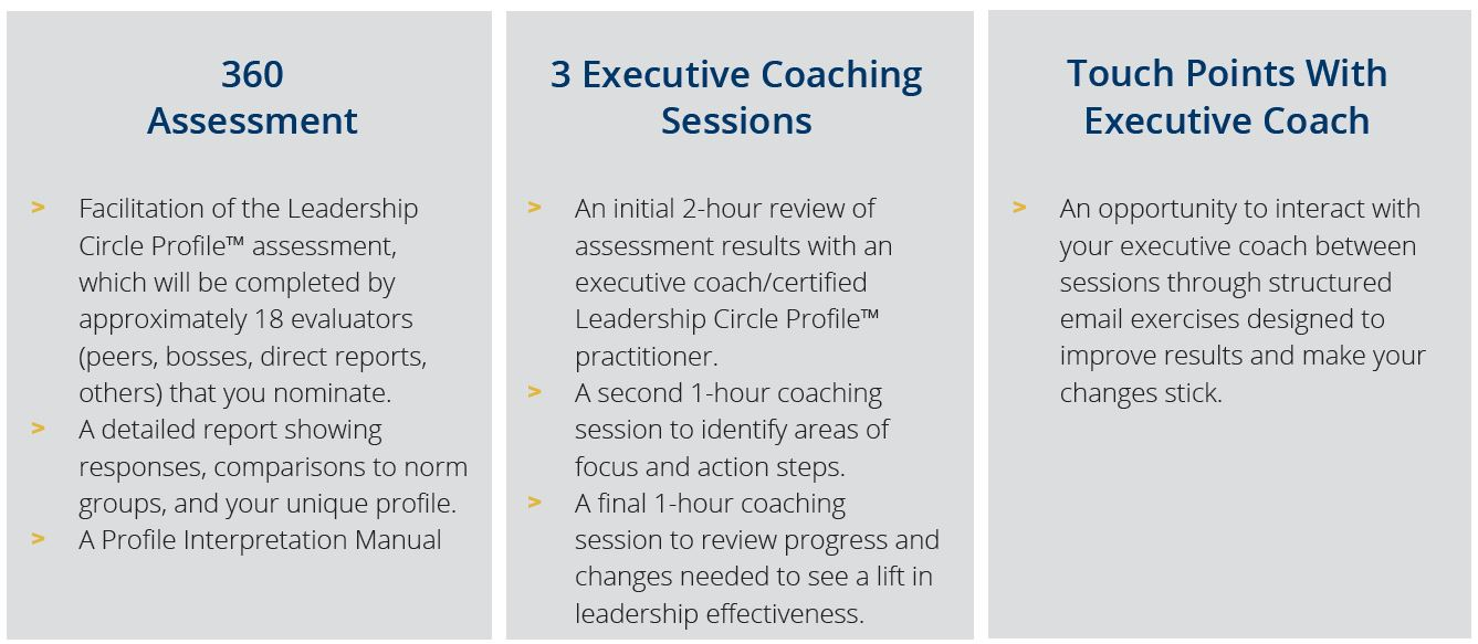 360 Capture What Coaching Includes